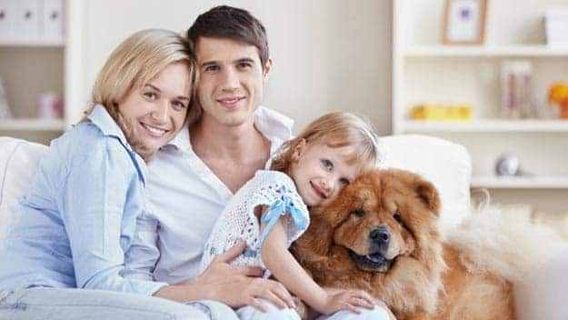 Wills & Trusts dog-young-family Direct Wills Thrapston